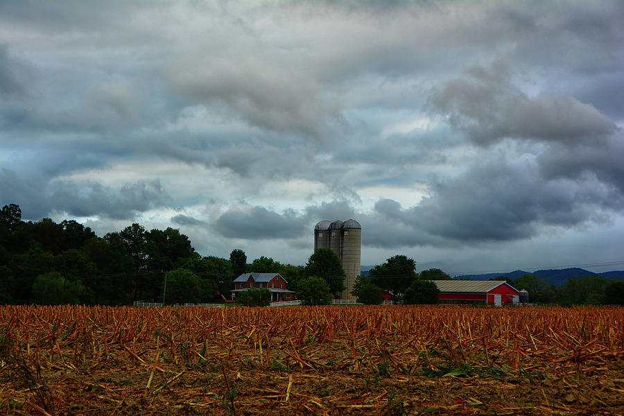 Farm in the Shenandoah Valley by Raymond Salani III