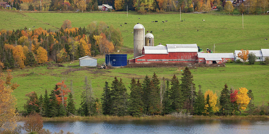 Farm Life by Cliff Wassmann