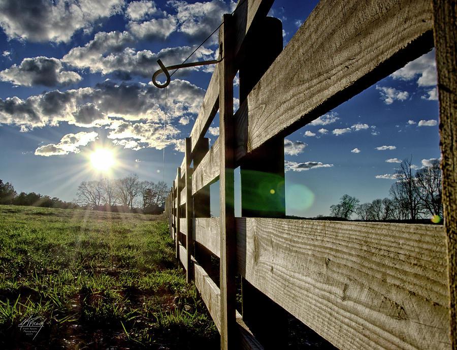 Farm Life by Michael Frank