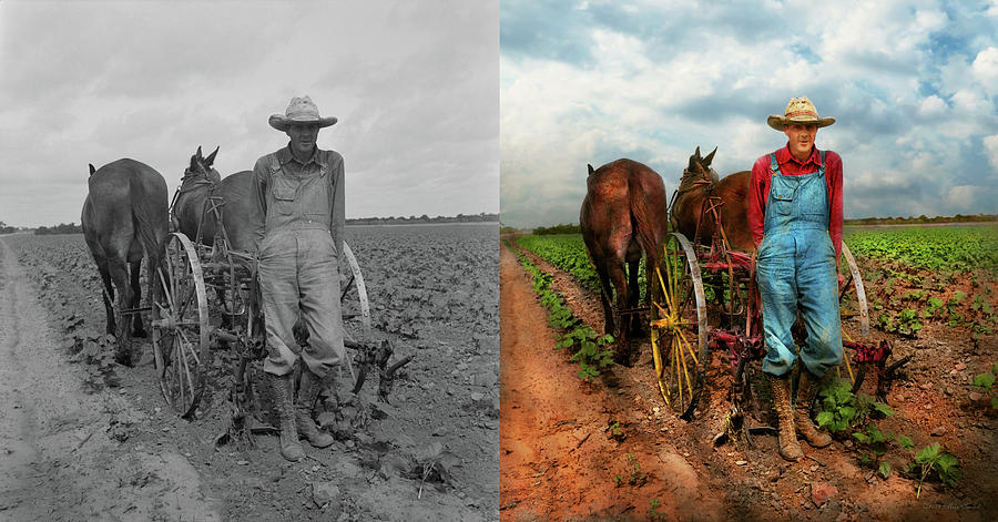 Farm - Plowing cotton 1937 - Side by Side by Mike Savad