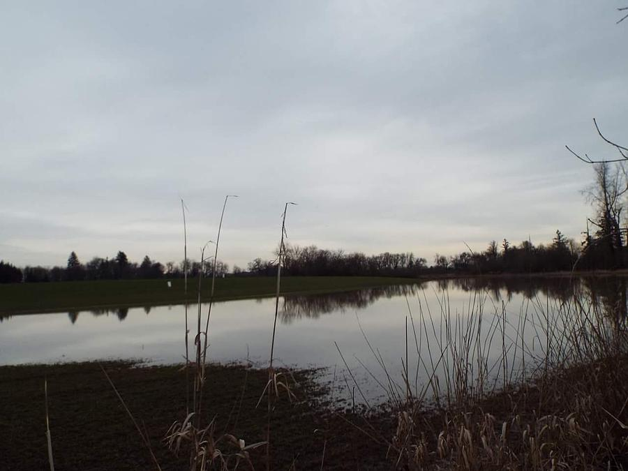 Farm Pond Photograph by James Harris