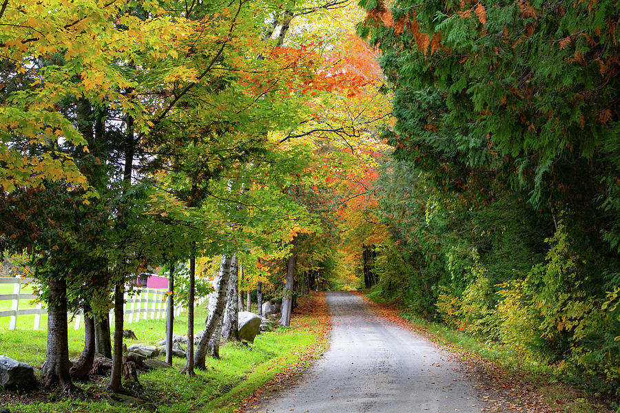 Farm Road in Peacham Vermont by Jeff Folger