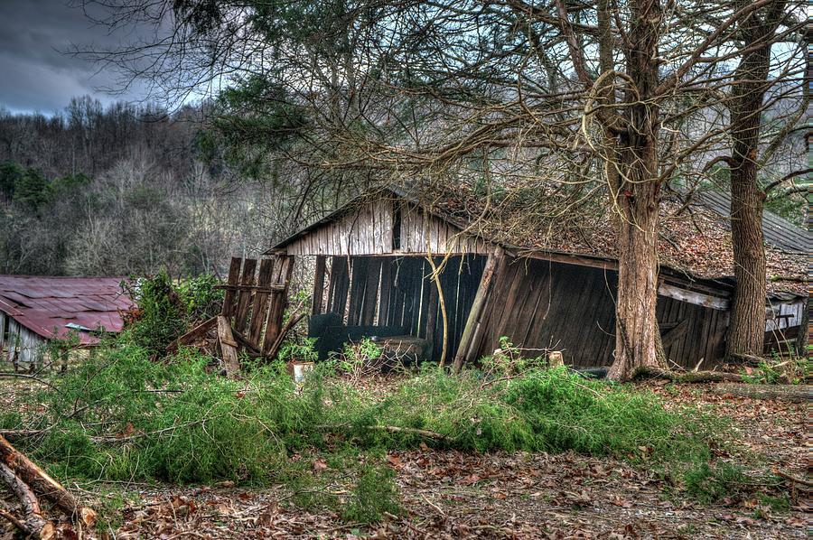 Farm Shed on its Way Down by Douglas Barnett