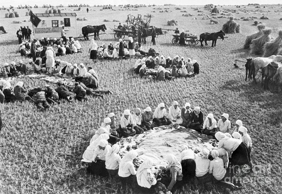 Farm Workers Sit In Rings In Field Photograph by Bettmann