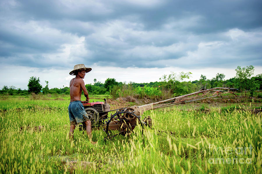 Farmer and Hand Tractor by Lee Craker