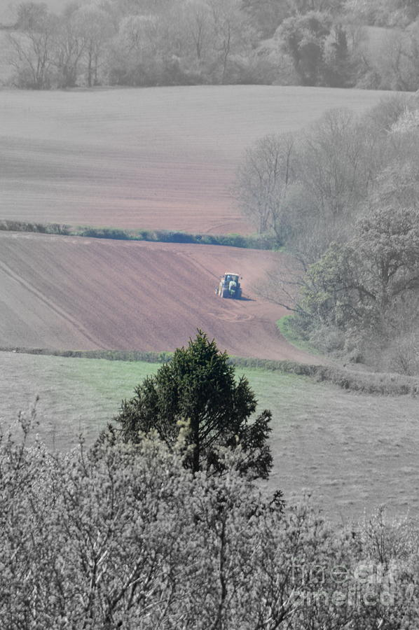Farmer Photograph - Farmer by Andy Thompson
