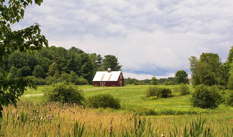 Back Roads Maine  Photograph by Ali Bailey