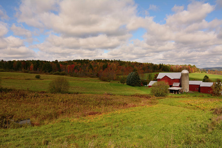 Farmland in Autumn by Angie Tirado