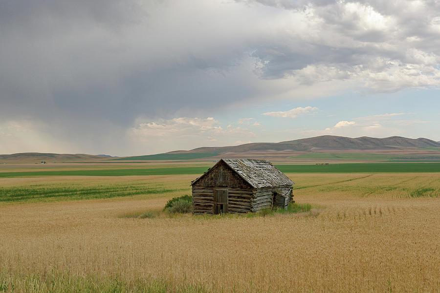 Farmstead Cabin Photograph