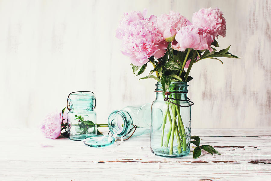 Farnhouse Pink Peonies in an Antique Mason Jar by Stephanie Frey