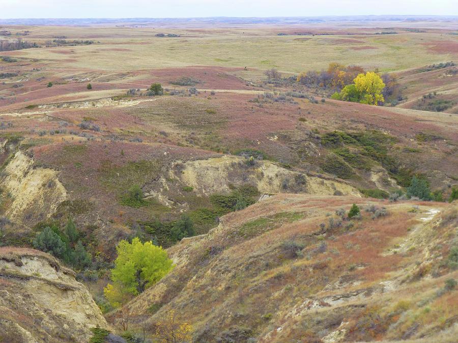 North Dakota Photograph - Feast Of September by Cris Fulton