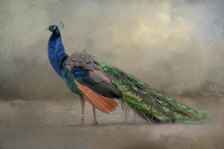 Feathered Dreams by Kelley Parker