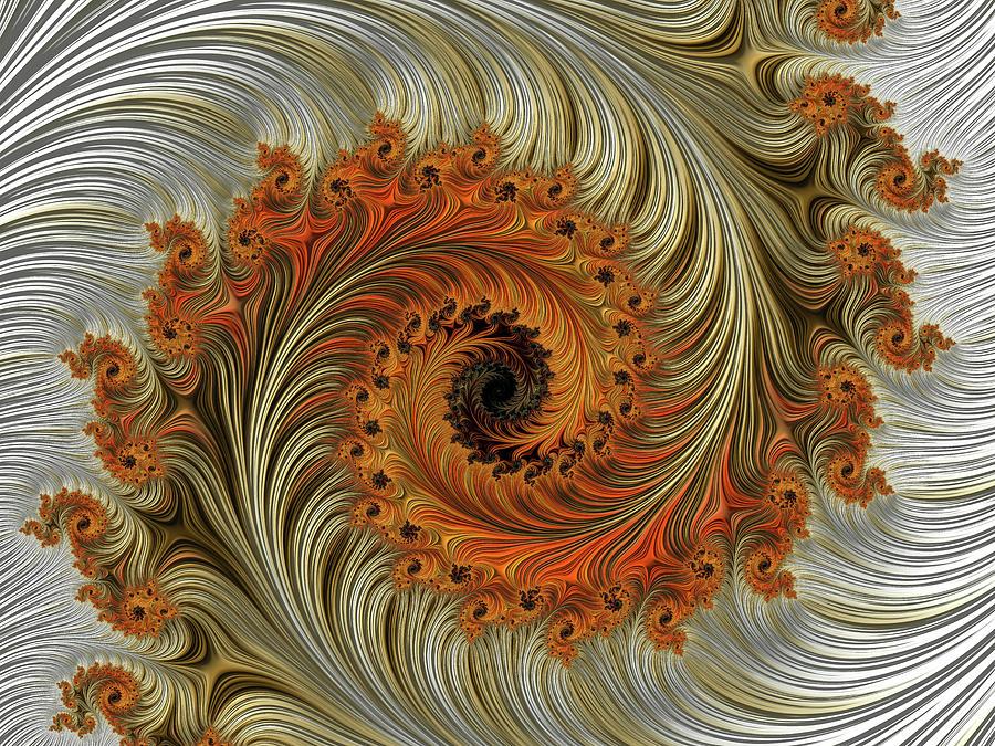 Feathery Spiral Digital Art