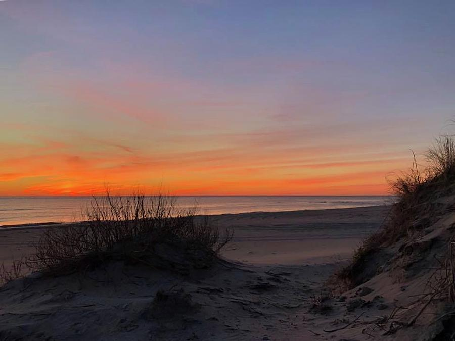 February 26, 2019 Pea Island by Barbara Ann Bell