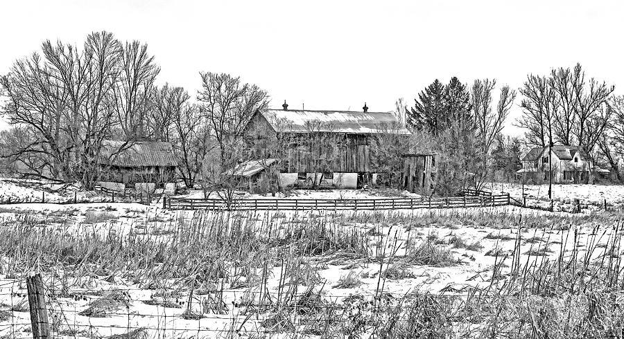 February Farm Bw Photograph