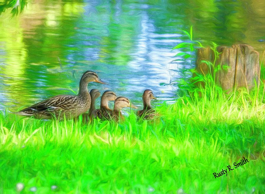 Female Mallard duck with four ducklings. by Rusty R Smith