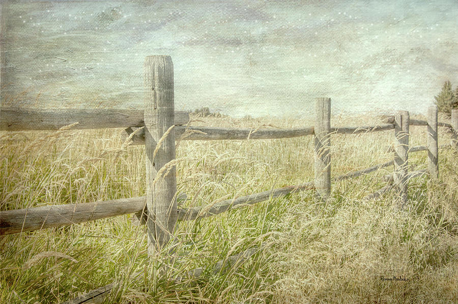 Fenced In by Ramona Murdock
