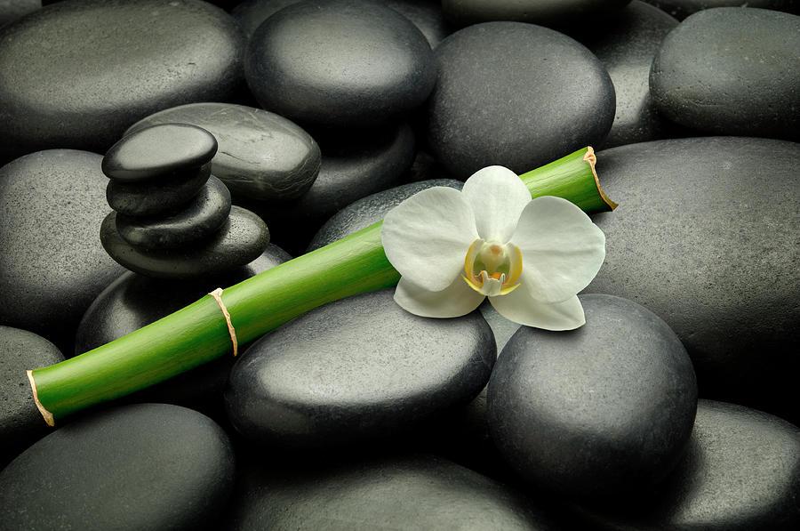Feng Shui Luxury Photograph by Pixhook