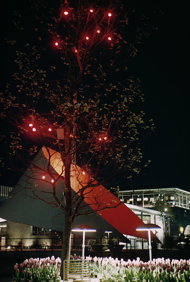 Festival Lights Photograph by Raymond Kleboe