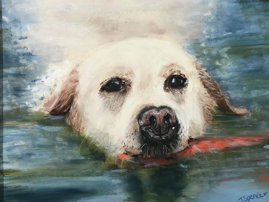 Fetch  by Joyce Spencer