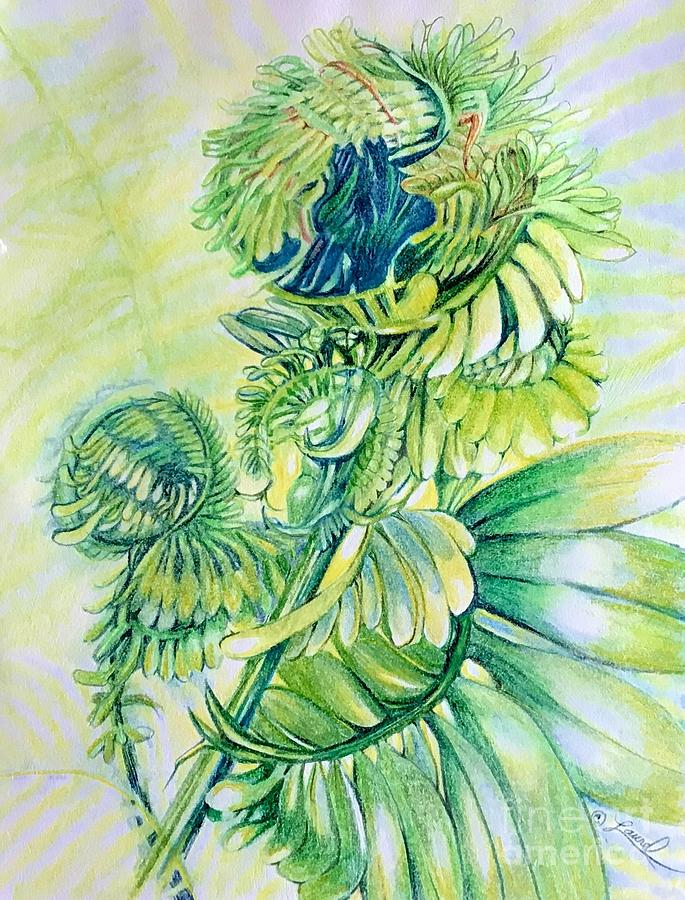 Botanical Abstract Drawing - Fiddle Dee Dee by Laurel Adams