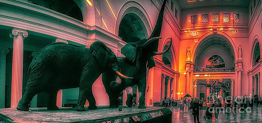 Field Museum Chicago Display Floor Sue Mastodon Tyrannosaurus T Rex Dinosaur Interior by Tom Jelen