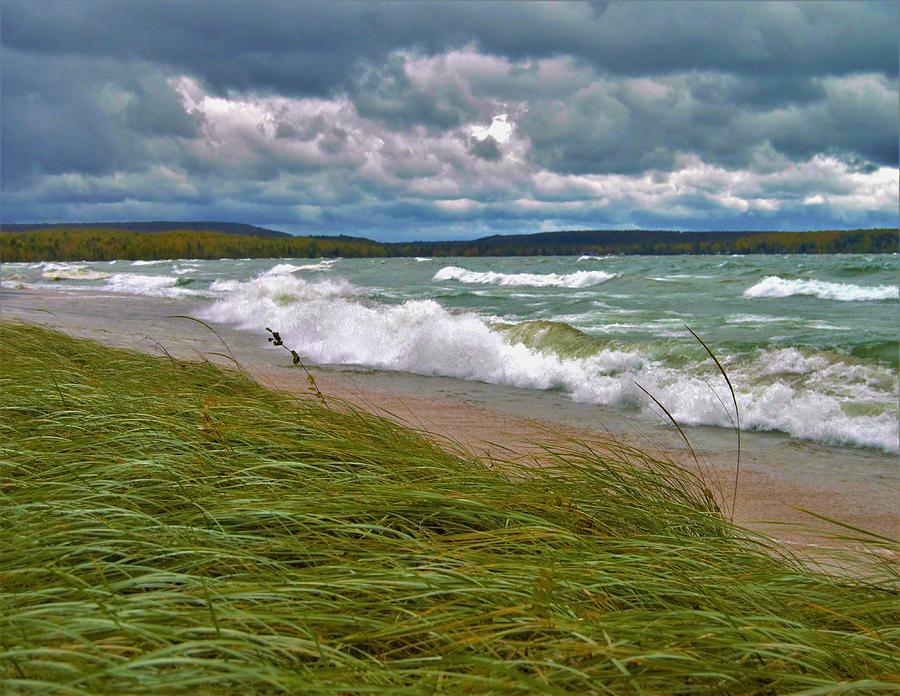 Field Of Green On Lake Superior Photograph