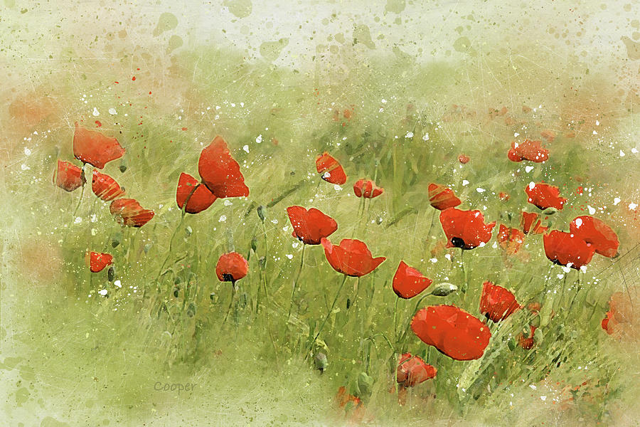 Field of Poppies by Peggy Cooper