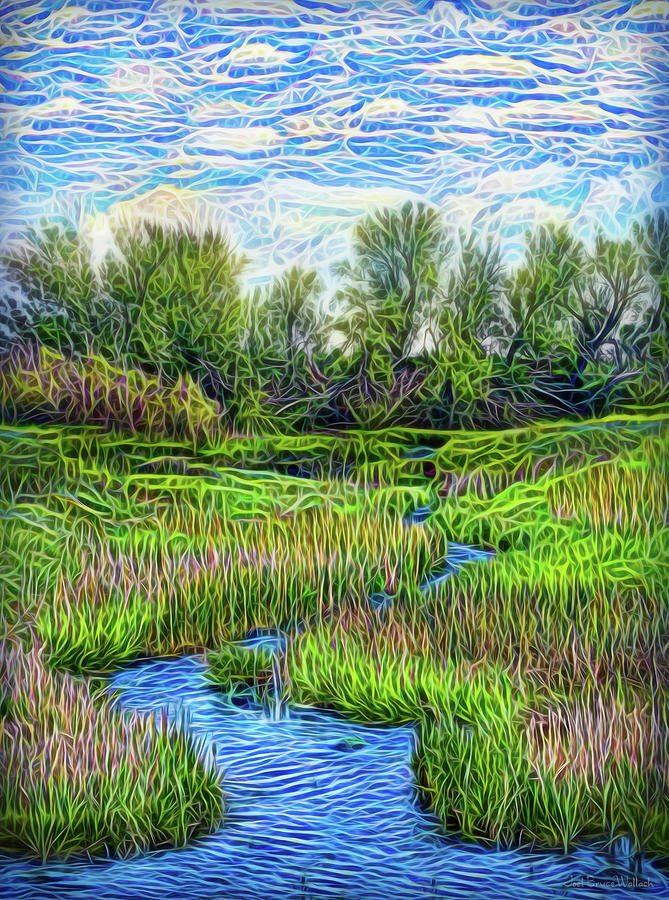 Field Of Streams by Joel Bruce Wallach