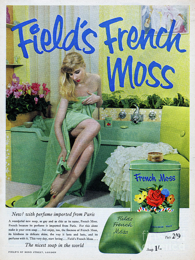 Fields French Moss Photograph by Picture Post