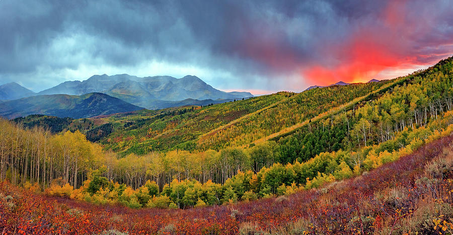 Fiery Photograph - Fiery Fall Panorama by Johnny Adolphson