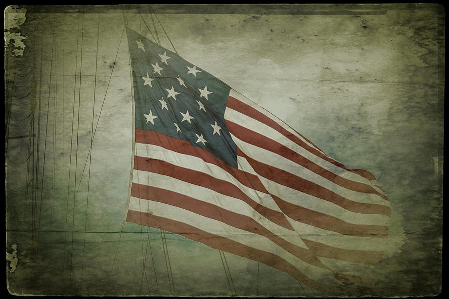 Fifteen Star Flag by Darryl Brooks
