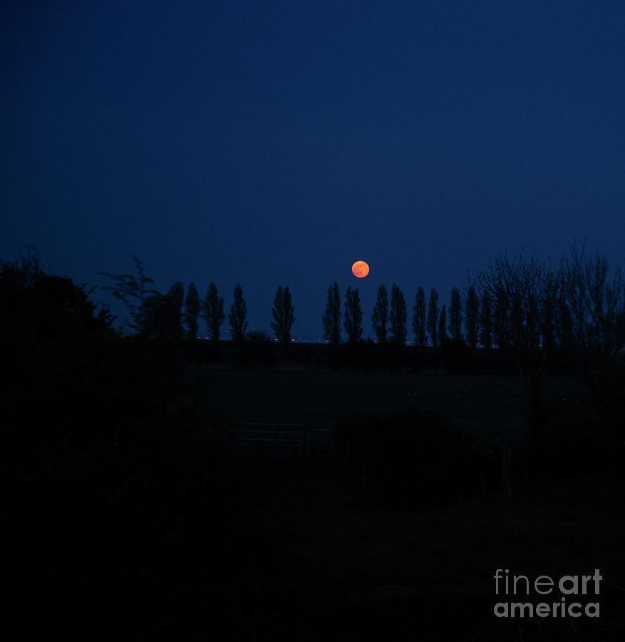 Fine art Red Moon at dusk by Jenny Potter