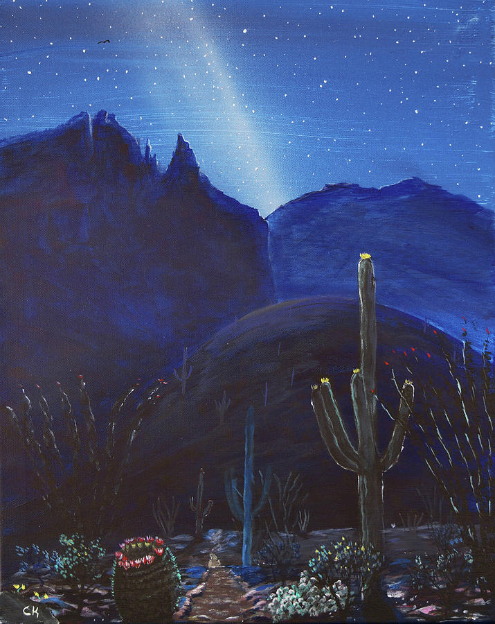 Finger Rock Trail Night, Tucson, Arizona by Chance Kafka