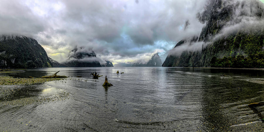 Fiord Milford Sound New Zealand South Island by OLena Art by OLena Art Brand
