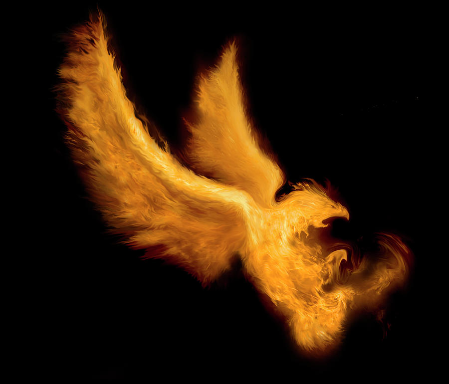 Fire Bird Digital Art by -asi