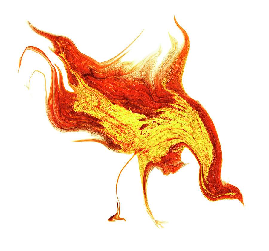 Fire Hen Digital Art