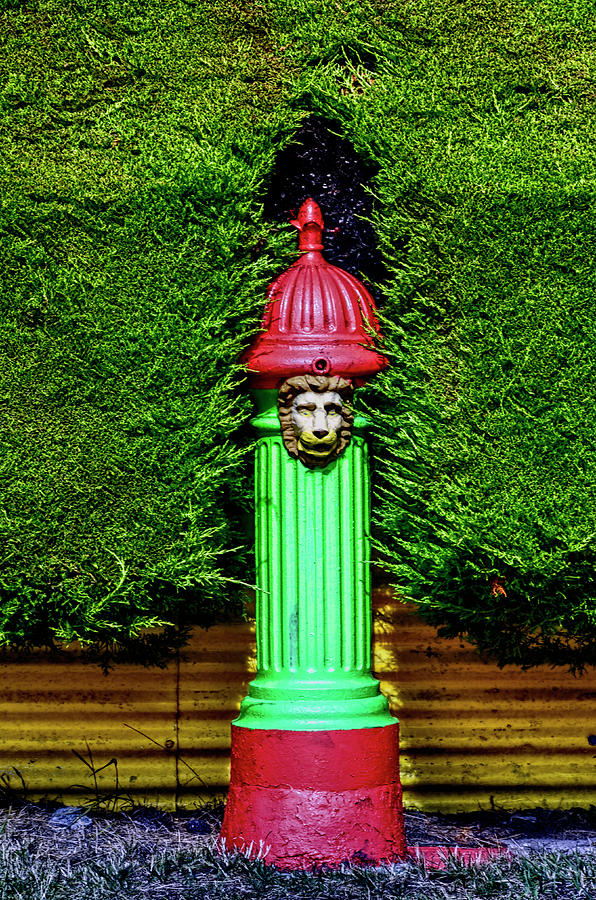 Fire Hydrant Colors by PAUL COCO