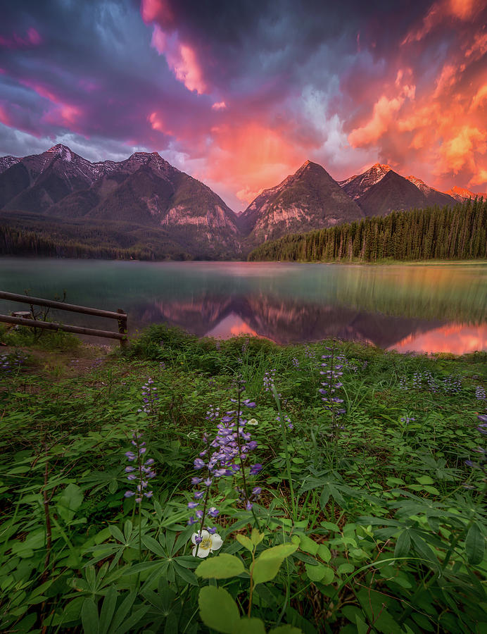 Fire Skies / Holland Lake, Montana   by Nicholas Parker