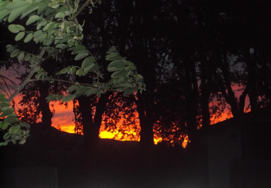 FIREY CA JUNE SUNSET by Cj Carroll