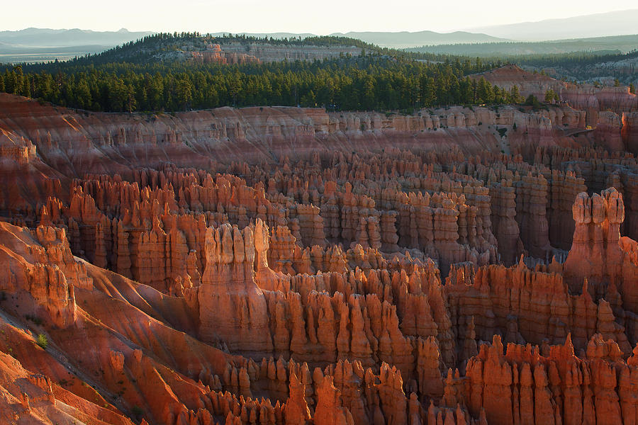 First Light on the Hoodoo Inspiration Point Bryce Canyon National Park by Nathan Bush