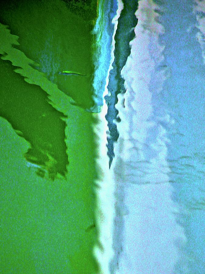 Reflections Photograph - Fish2 by Gillis Cone