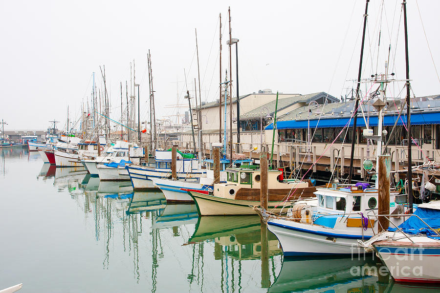 Destination Photograph - Fishing Boats At Fishermans Wharf In by Radoslaw Lecyk