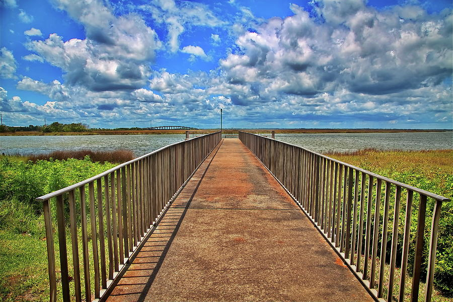 Fishing Pier in Marsh by Darryl Brooks