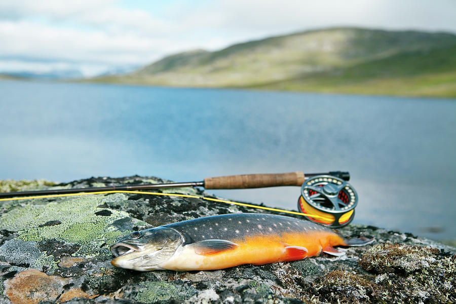 Fishing Rod And Char With Lake In Photograph by Johner Images