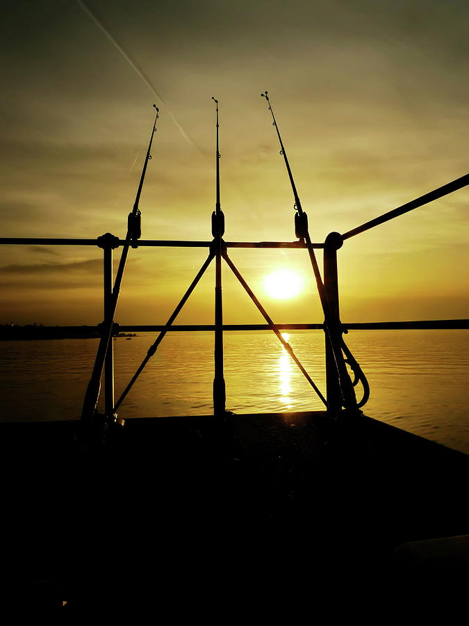 Fishing Rods Photograph by Rolfo