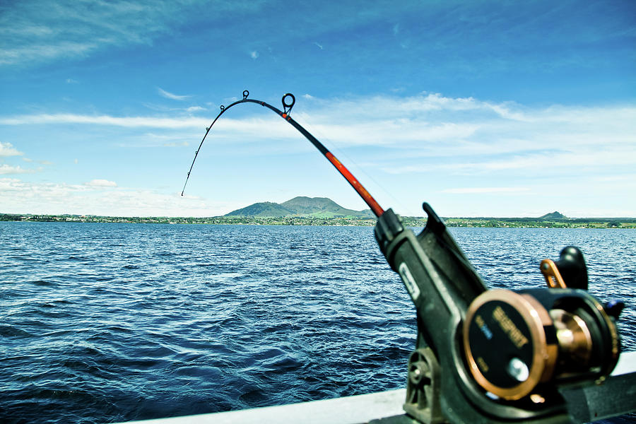 Fishing Photograph by Walter wang