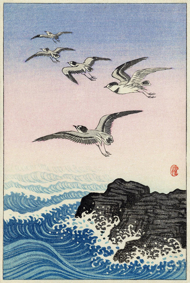 Five Seagulls Above Rock In The Sea By Koson by Ruth Moratz