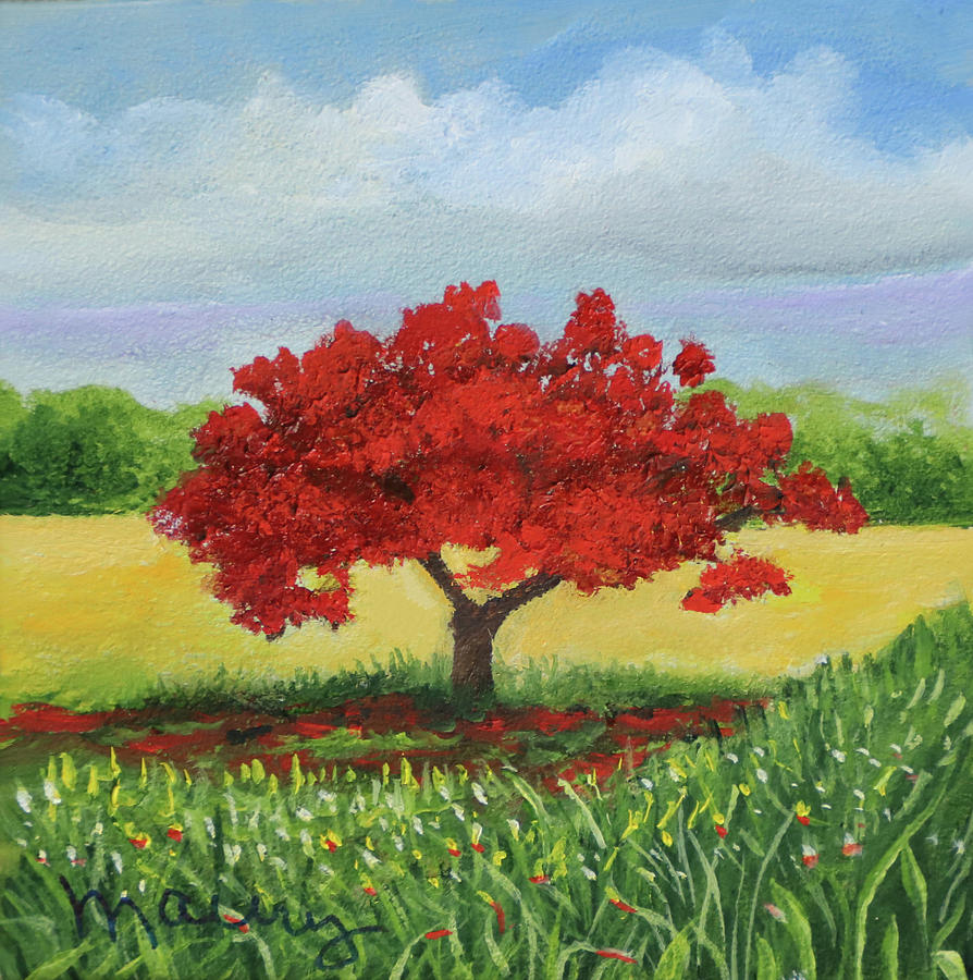 Flamboyant Near The Hill by Alicia Maury