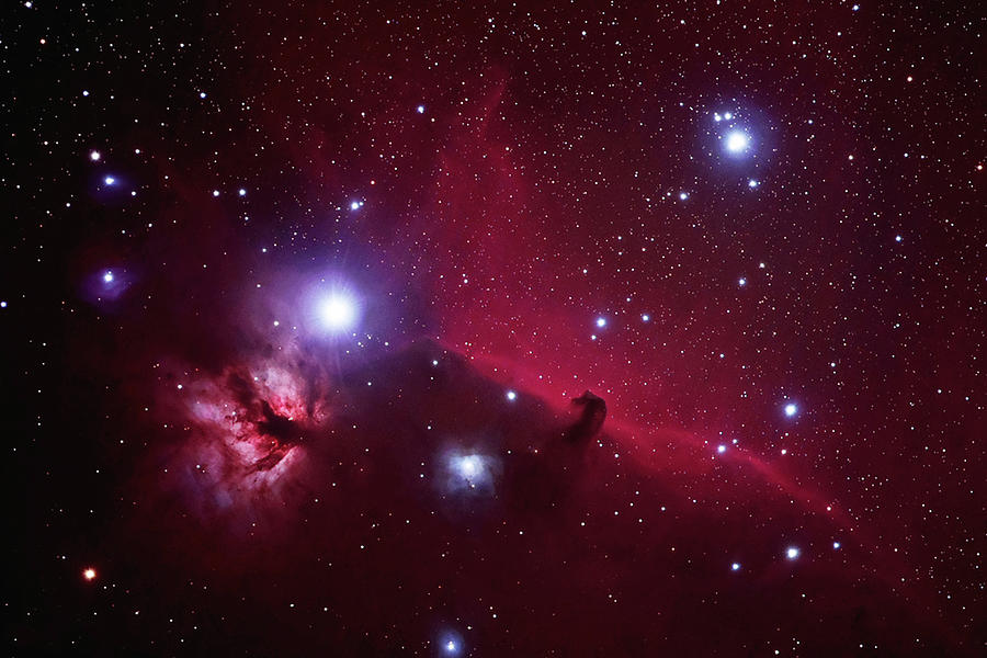 Flame And Horsehead Nebula Photograph by Pat Gaines